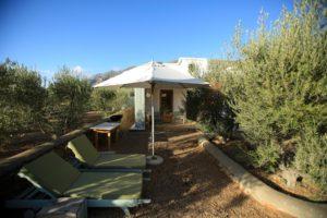 accommodation (34)