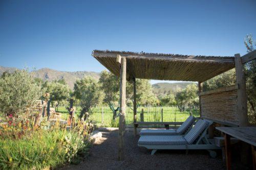 olive-cottage-20201105 (1)